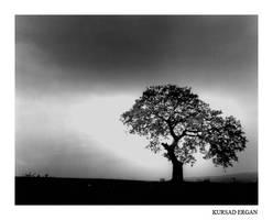 alone by kursad