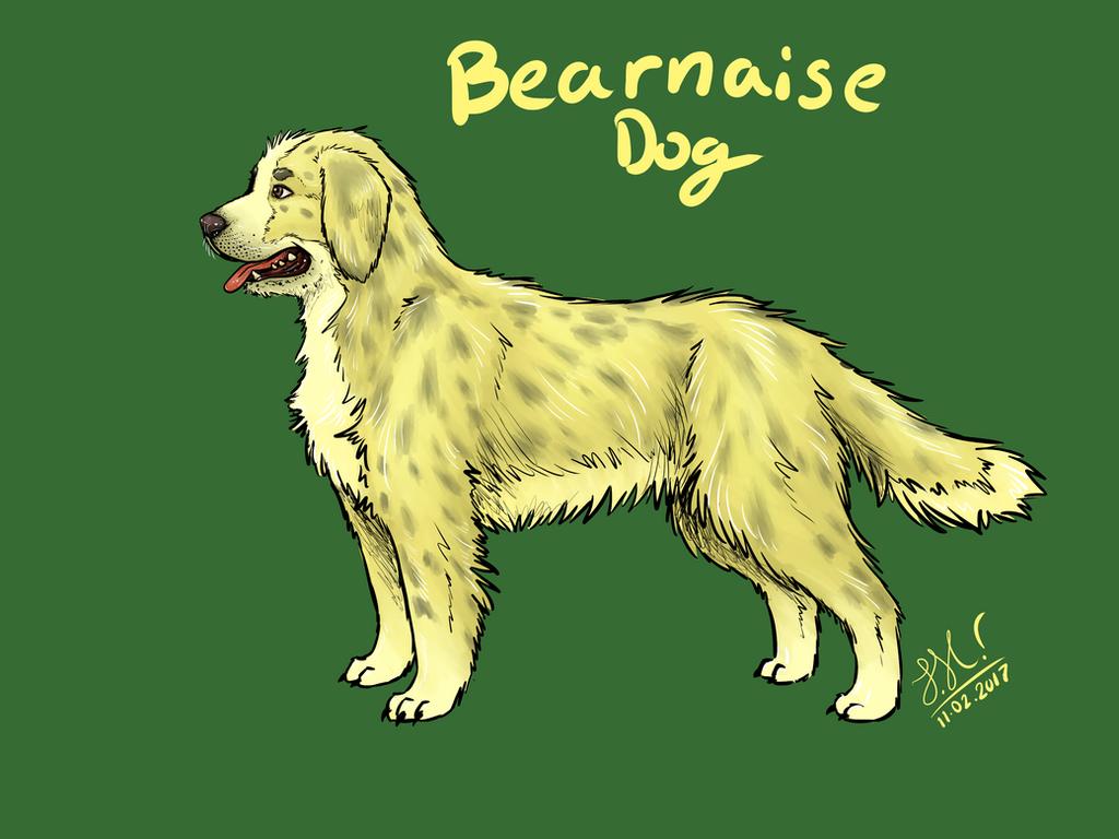 Bearnaise Dog by Jamack97