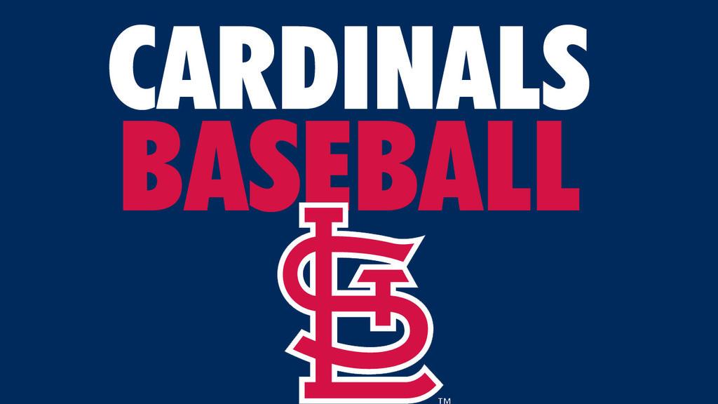 St louis cardinals baseball necklace amazon