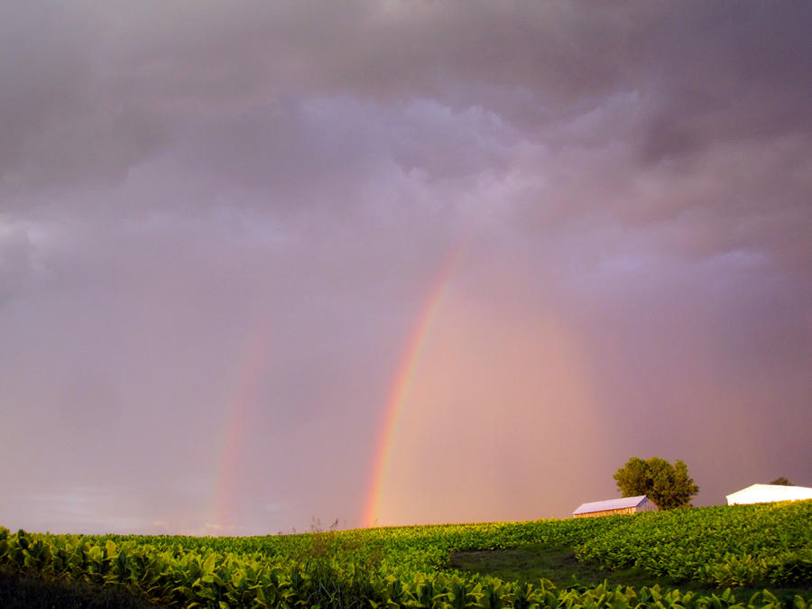 Double Rainbow II by mim304