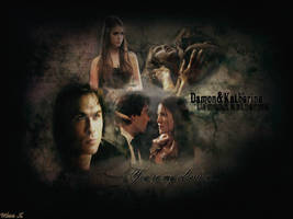 The Vampire Diaries by MissX-24-02