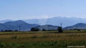 Meadows Mirage