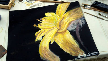 Yellow lys by keberin