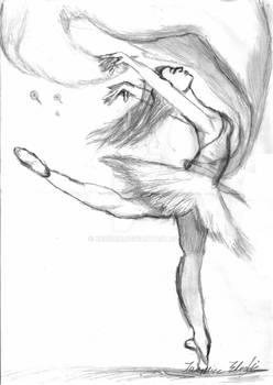 Taking flight- L'envol