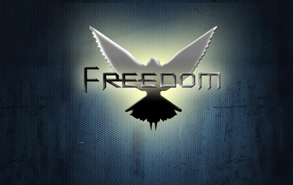 Freedom Wallpaper 1900x1200px By OnlineGameWolfX