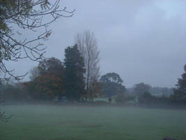 foggy eveing by loobyloukitty