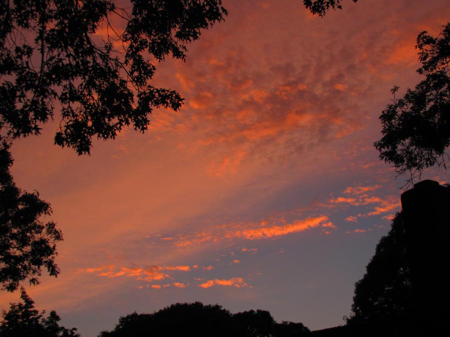 Beauty in the sky 4