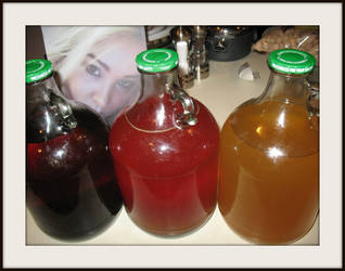 Three gallons of different home brewed meads by FallisPhoto