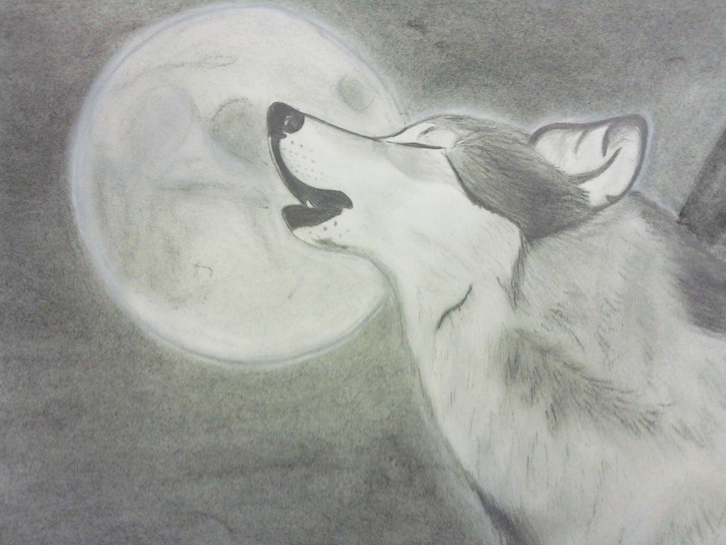 Wolf spirit by cool blue on deviantart for Good sketches to draw