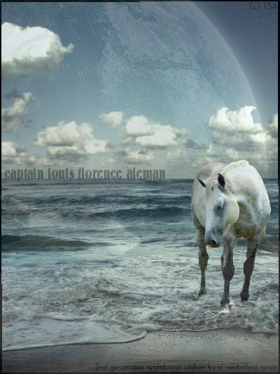 ^ Twilightstars ^ horses Horse_Manip____by_CrownTalisman