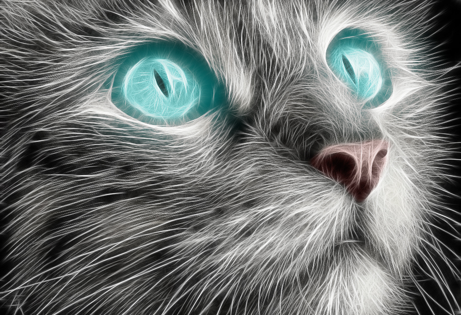 Fractalius cat by midrevv