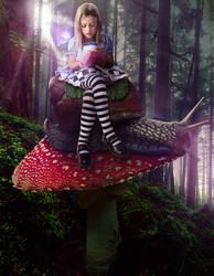 Alice's Journey by midrevv
