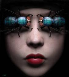 Blue Flies by Conlaodh