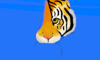 Tiger - Wip by tite-pao