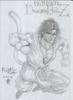 Ultimate Dragon Ball Z - Character Sketch