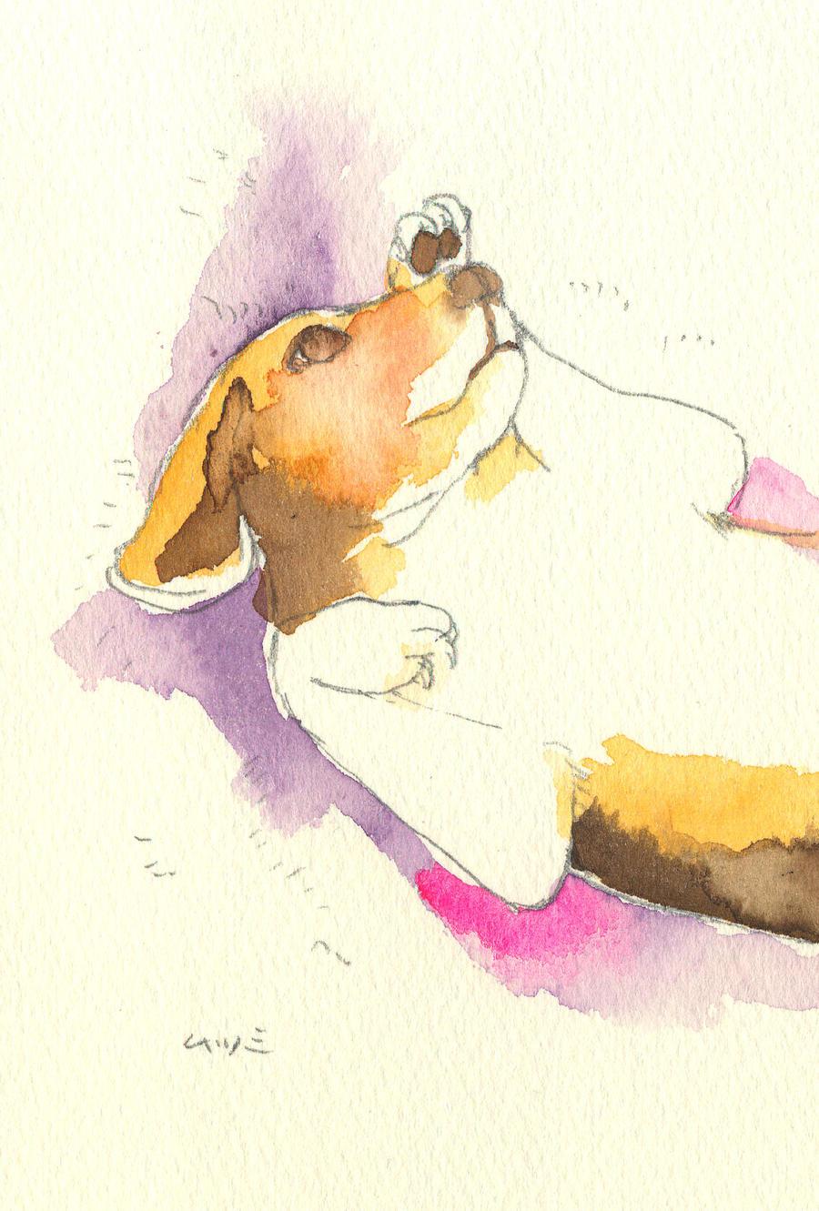 Watercolor: Beagle II by muttiy