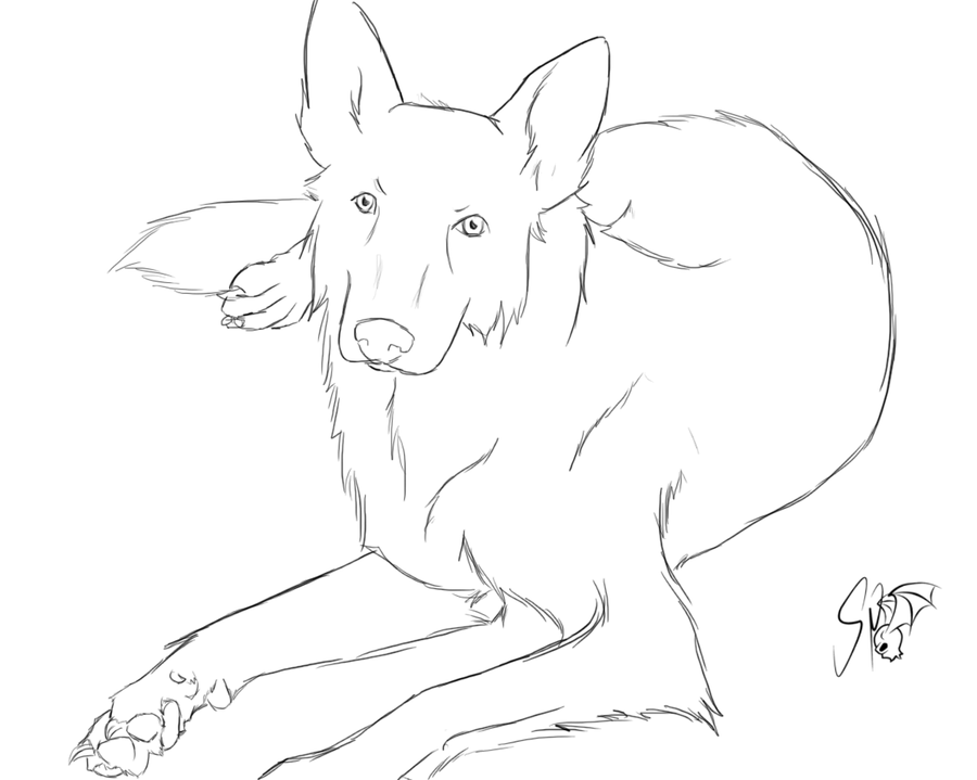 Line Drawing Of Dog : Dog lineart by supersie on deviantart