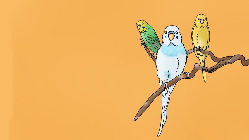 Birdbrains by Sixala