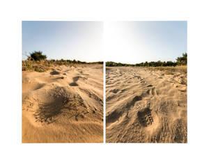 Almost A Desert