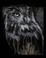 Morbid Curiosities: Owl by jskaphobe