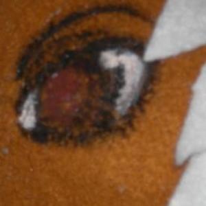 NearToNil's Profile Picture
