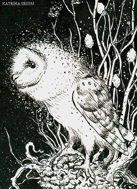 Owl by Kaelycea