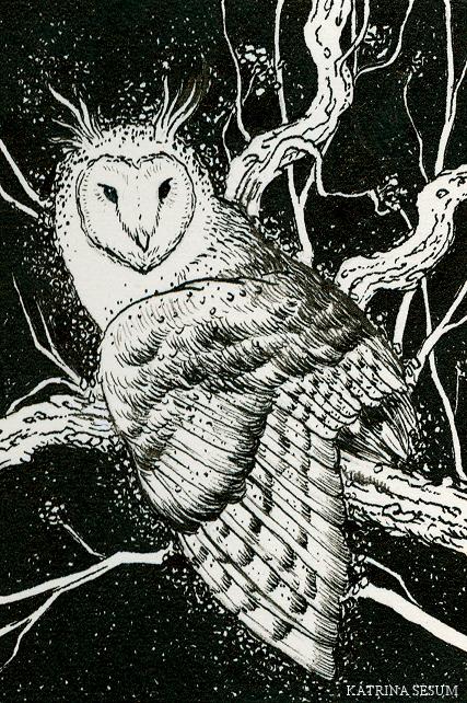 Owl 2 by Kaelycea