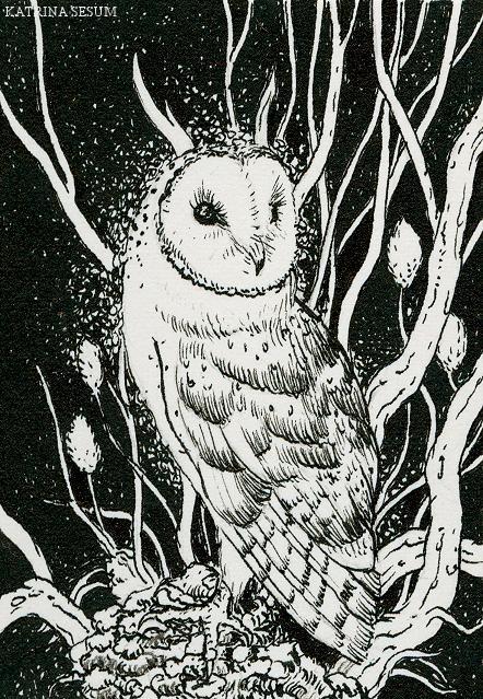 Owl 3 by Kaelycea