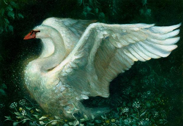 Jewelled Swan - Oilby Kaelycea