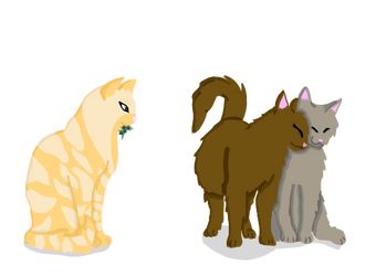 My friends mine and my boyfriends Warrior Cats ocs by MikiTitan