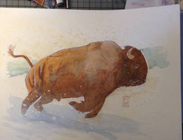 Today's watercolor sketch: BISON! by RM-WINCH
