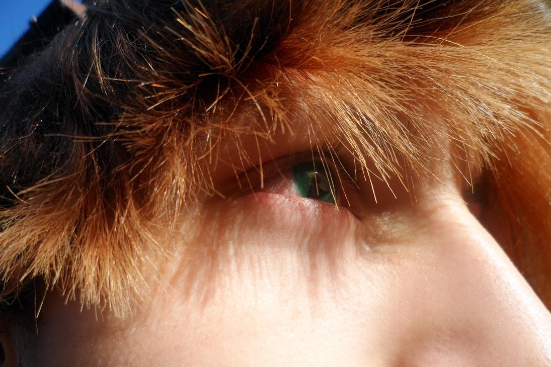 Reptilian Contact Lenses: Close up by Crimson666Fox