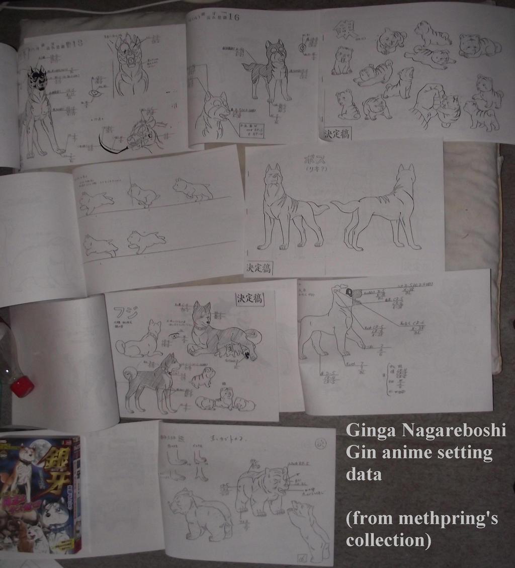 Ginga Nagareboshi Gin anime setting data