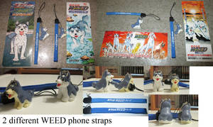 2 different WEED phone straps