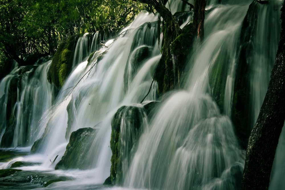 el bosque encantado de Jiuzhaigou by clalepa
