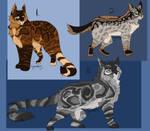 Warrior cat adopts BTA