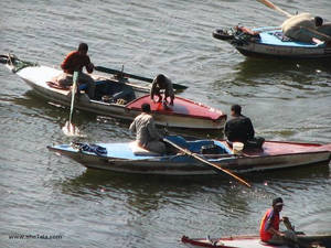 Fishing day, River Nile, Egypt