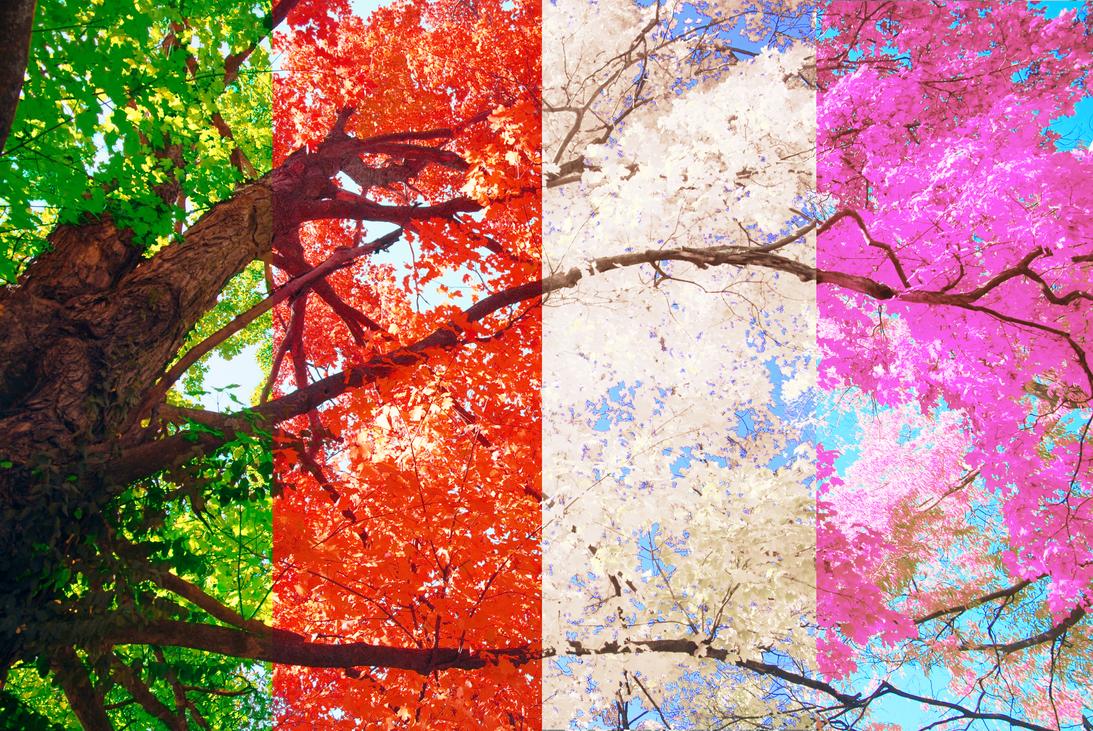 Four Seasons 2 by wazzy88