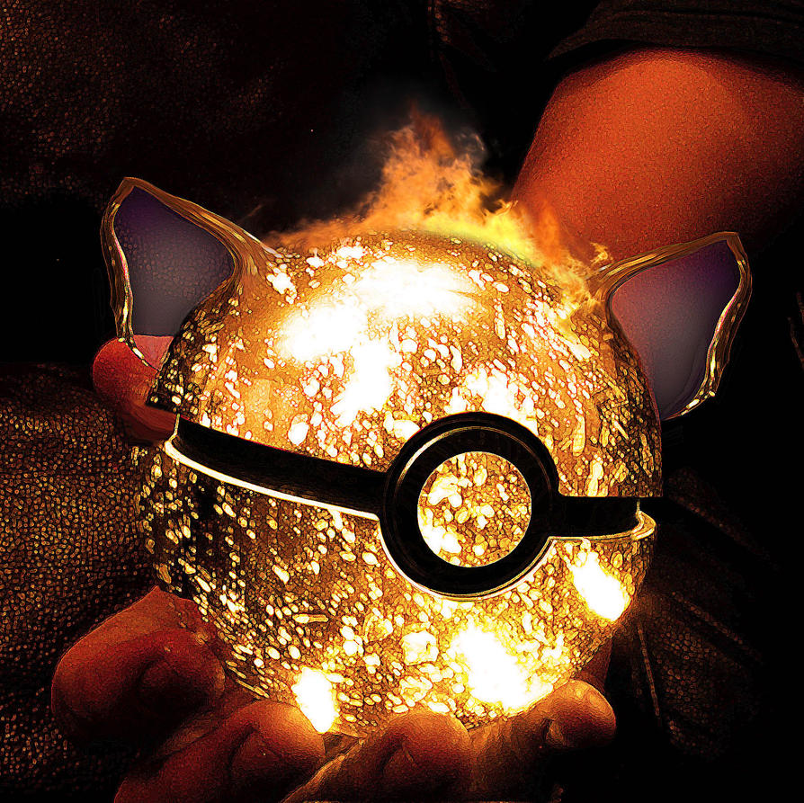 The Pokeball of Charizard by wazzy88