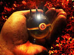 One Pokeball to rule them all