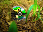 The Pokeball of Snivy