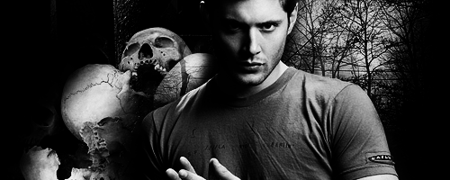 Dean: Banner2 by BelovedBastet
