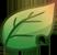 Leaf by floramisa