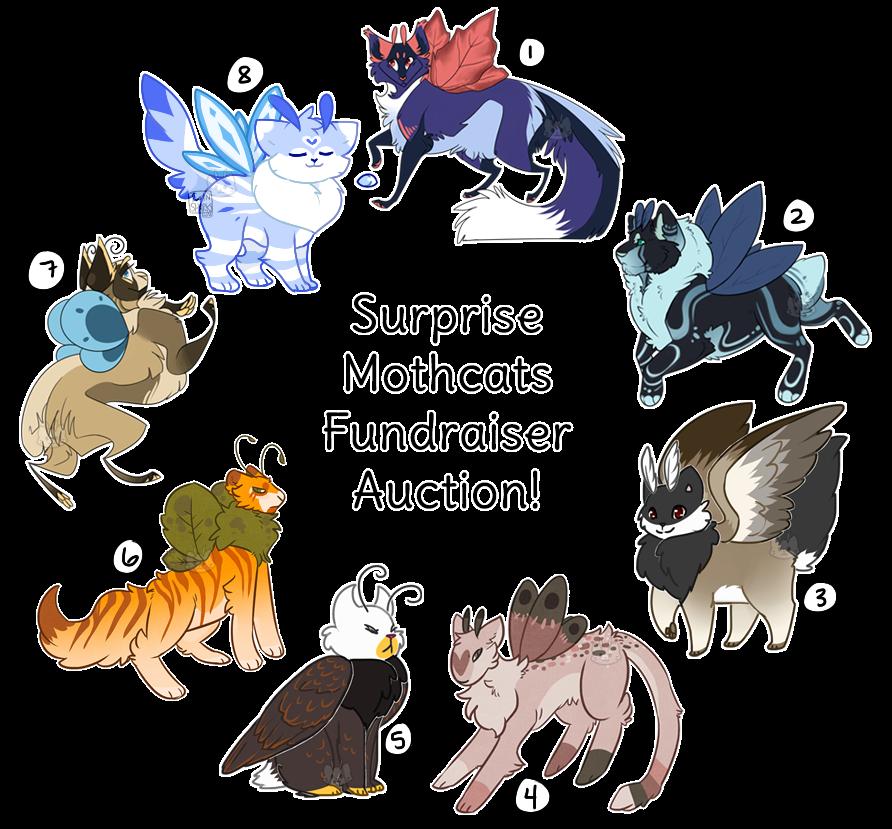 Surprise Mothcats Fundraiser Auction (CLOSED)