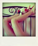 ladybird by NovemberBreezes