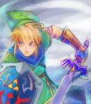 Hyrule Warriors - Unfinished Link by xFennek
