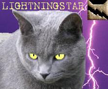 lightning's icon by Lightningstar9