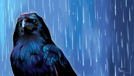 raven by AlexanderGorodinski