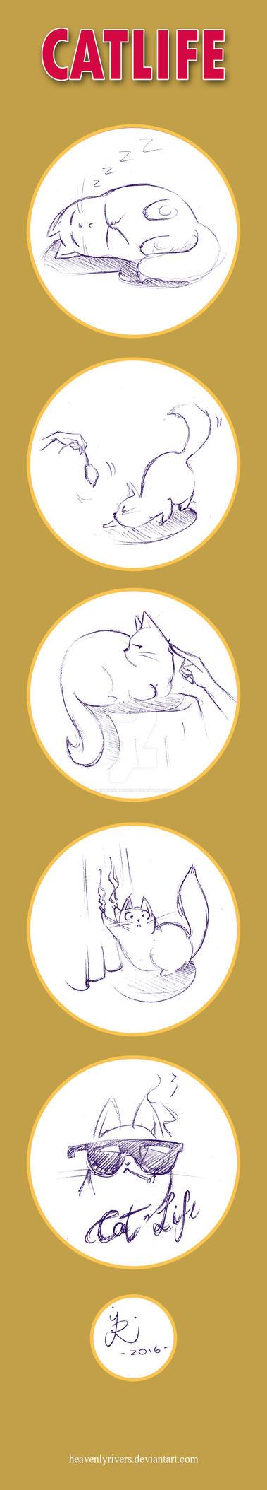 CatLife by HeavenlyRivers