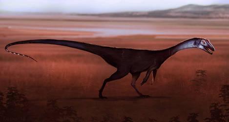 Dinovember 4: Coelophysis